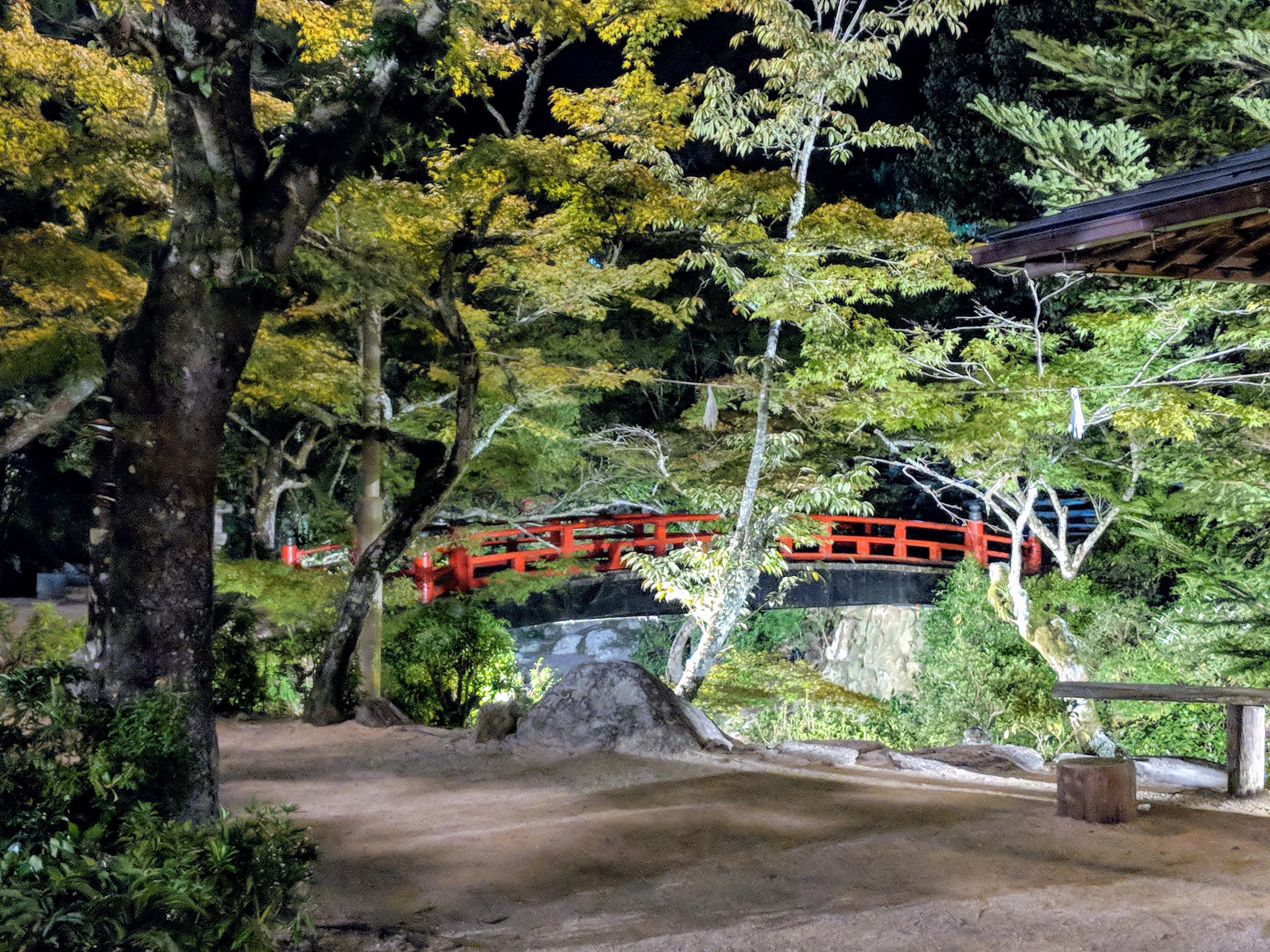 Bridge in Japanese Forest